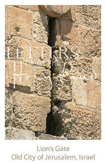 /wp-content/uploads/Letters/LetterOnly/I-07_Jerusalem city wall_2019.png
