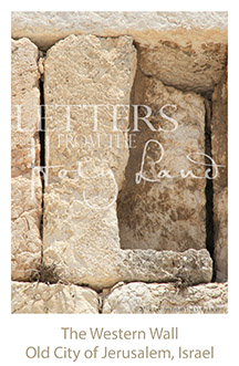 /wp-content/uploads/Letters/LetterOnly/L-01_western wall detail_2019.png