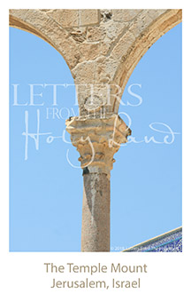 /wp-content/uploads/Letters/LetterOnly/Y-06_Temple Mount_2019.png